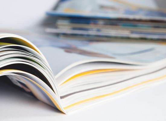 Schnabel | Katalog